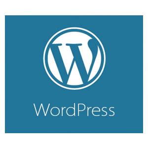 Обзор плагинов для WordPress – самое необходимое.